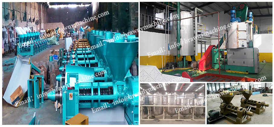 Good Quality Small Scale Edible Oil Refinery Oil Deodorizing Machinery Palm Oil Refining Machine
