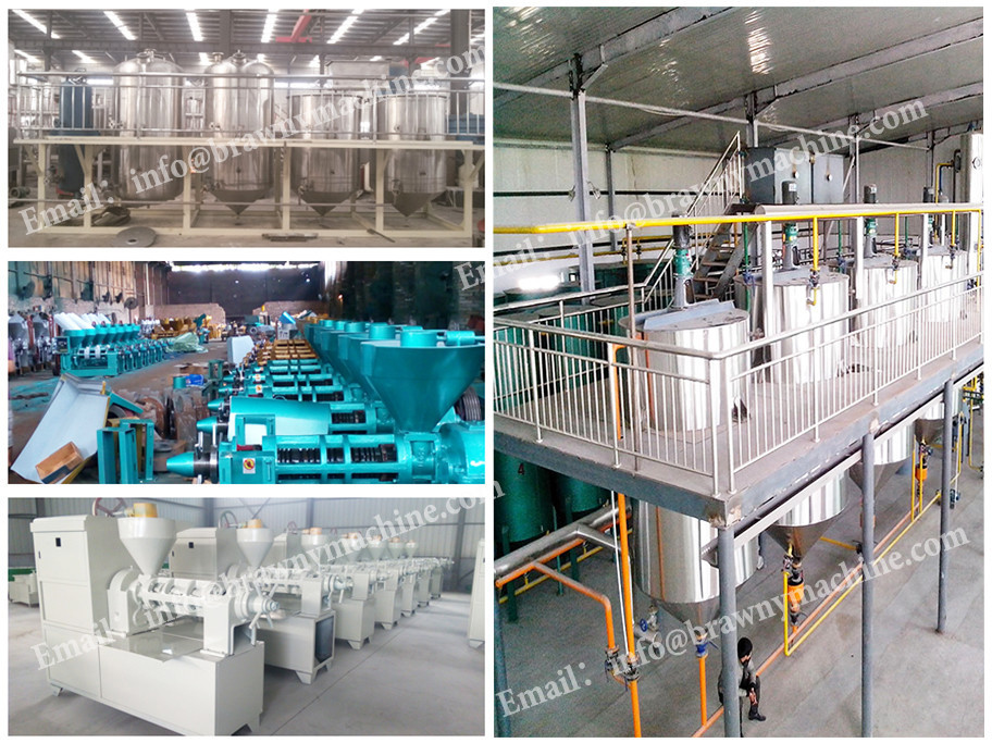 Tel No.64312428 palm oil mill/palm oil refining machine/palm kernel oil extraction machines